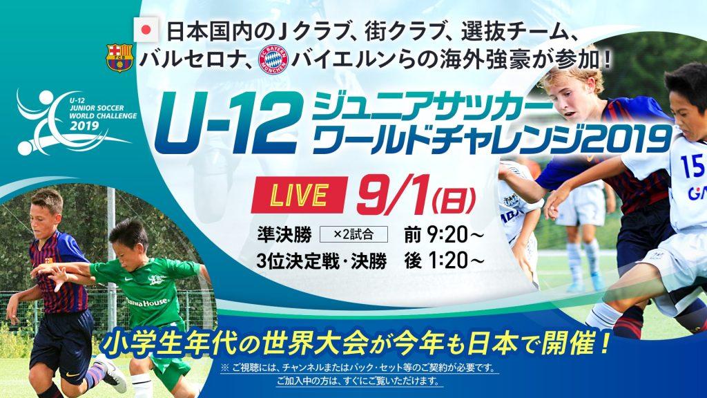 J リーグ ワールド チャレンジ 2020